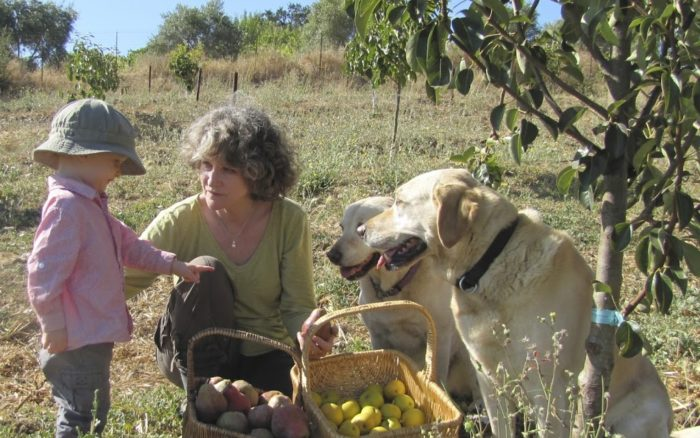 Learn Biodynamic Practices at the National Heirloom Expo in Santa Rosa, CA