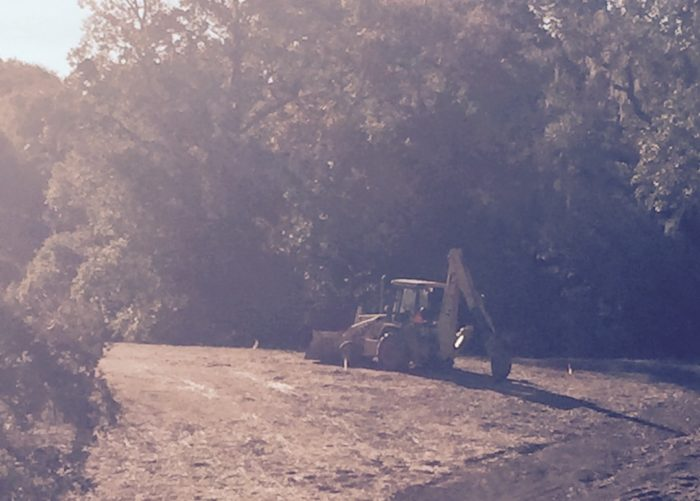 Decisions: Consequence to oak savanna of rural tourism